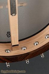 Bart Reiter Banjo Special NEW Image 15