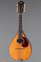 1924 Martin Mandola Style BB (rosewood mandola)