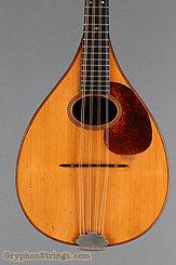 1924 Martin Mandola Style BB (rosewood mandola) Image 10