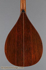 1924 Martin Mandola Style BB (rosewood mandola) Image 12