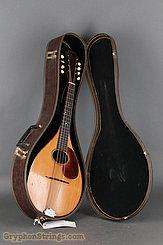 1924 Martin Mandola Style BB (rosewood mandola) Image 20