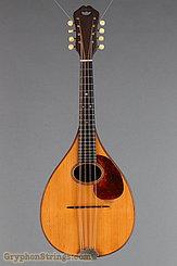 1924 Martin Mandola Style BB (rosewood mandola) Image 9