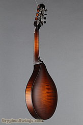 Collings Mandolin MT NEW Image 6