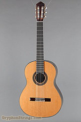 New World Guitar  Player P640C NEW