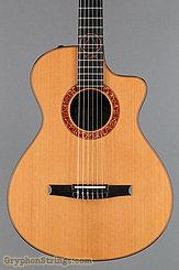 2010 Taylor Guitar Jason Mraz Image 10
