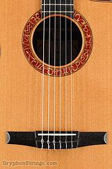 2010 Taylor Guitar Jason Mraz Image 11