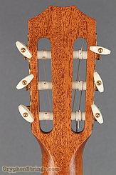 2010 Taylor Guitar Jason Mraz Image 14