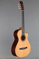 2010 Taylor Guitar Jason Mraz Image 2
