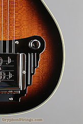 Gold Tone Guitar LS-6 NEW Image 14