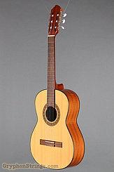 2017 Strunal Guitar 4655 3/4 Image 8