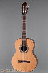 Kremona Guitar F65C NEW