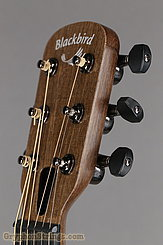 "Blackbird Guitar Savoy ""O"" NEW Image 14"