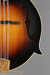 2015 Weber Mandolin Diamondback F Image 15