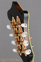 2015 Weber Mandolin Diamondback F Image 24