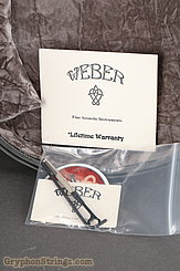 2015 Weber Mandolin Diamondback F Image 32