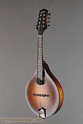 Collings Mandolin MT O Mandolin NEW