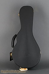 Guardian Case VINTAGE F MANDOLIN Case NEW