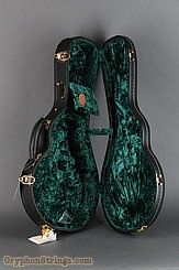 Guardian Case VINTAGE F MANDOLIN Case NEW Image 5