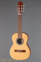 2011 Strunal Guitar 4655 1/4