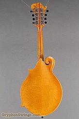 Northfield Mandolin NF-F5S Amber Mandolin NEW Image 5