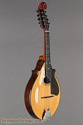 c  1919 Lyon & Healy Mandolin Style A - Mandolin Family