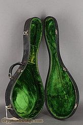 c. 1919 Lyon & Healy Mandolin Style A Image 33