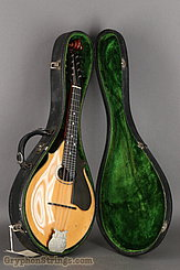 c. 1919 Lyon & Healy Mandolin Style A Image 34
