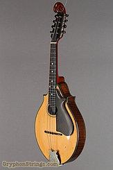c. 1919 Lyon & Healy Mandolin Style A Image 8