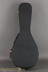 Guardian  Case Guardian Mandolin A case NEW Image 1