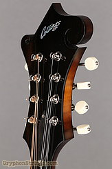 Collings Mandolin MF, gloss top, ivoroid binding, bound pickguard NEW Image 14