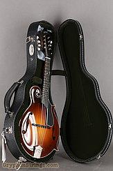 Collings Mandolin MF, Gloss top, Ivoroid binding, Pickguard NEW Image 17