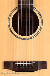 Backporch Guitar Dreadnought, flamed Mahogany, DTHES NEW Image 11