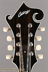 Collings Mandolin MF Deluxe Mandolin NEW Image 13