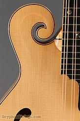 2014 Eastman Mandolin MD915 Image 12