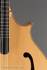 2014 Eastman Mandolin MD915 Image 13