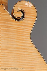 2014 Eastman Mandolin MD915 Image 18