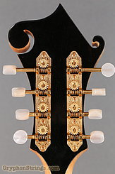 2014 Eastman Mandolin MD915 Image 23