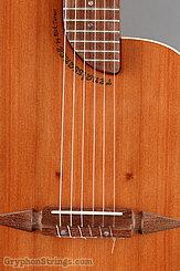 Rick Turner Guitar Renaissance RN-6 Redwood/Mahogany NEW Image 11