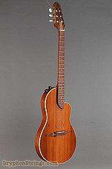 Rick Turner Guitar Renaissance RN-6 Redwood/Mahogany NEW Image 2