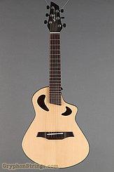 Veillette Guitar Avante Gryphon 6, Natural NEW Image 9