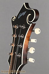 Collings Mandolin MF, Deluxe, Gloss top, Ivoroid binding, Pickguard NEW Image 14