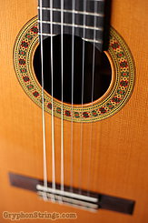 Cervantes Guitar Rodriguez PE NEW Image 16