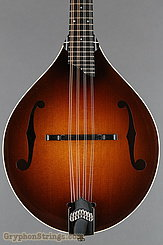 Collings Mandolin MT Torrefied, ivoroid binding, gloss top NEW Image 10