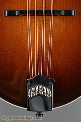 Collings Mandolin MT Torrefied, ivoroid binding, gloss top NEW Image 11