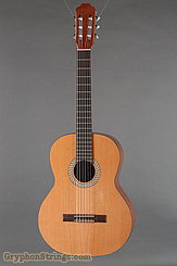 2017 Kremona Guitar Soloist S65C