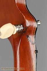 1897 S. S. Stewart Banjo Special Thoroughbred Image 21