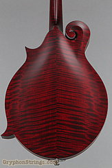 Collings Mandolin MF, Ivoroid binding w/ pickguard, Merlot Gloss Finish Mandolin NEW Image 12