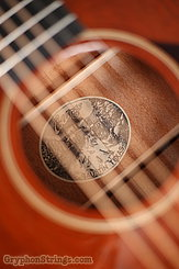 Collings Guitar 01 mh T, Traditional NEW Image 18