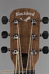 """Blackbird Guitar Savoy """"O"""" misi pickup NEW Image 13"""