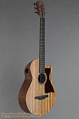 """Blackbird Guitar Savoy """"O"""" misi pickup NEW Image 2"""